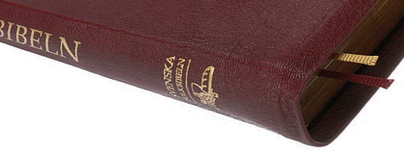 Bibeln nya testamentet online dating 3